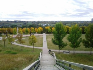 An overview of the river valley from a set of wooden stairs
