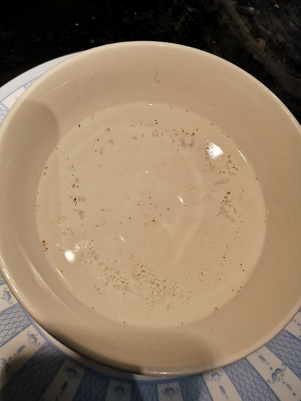 Flecks of black pepper floating in water. The pepper forms a ring around the outer edge of the bowl.