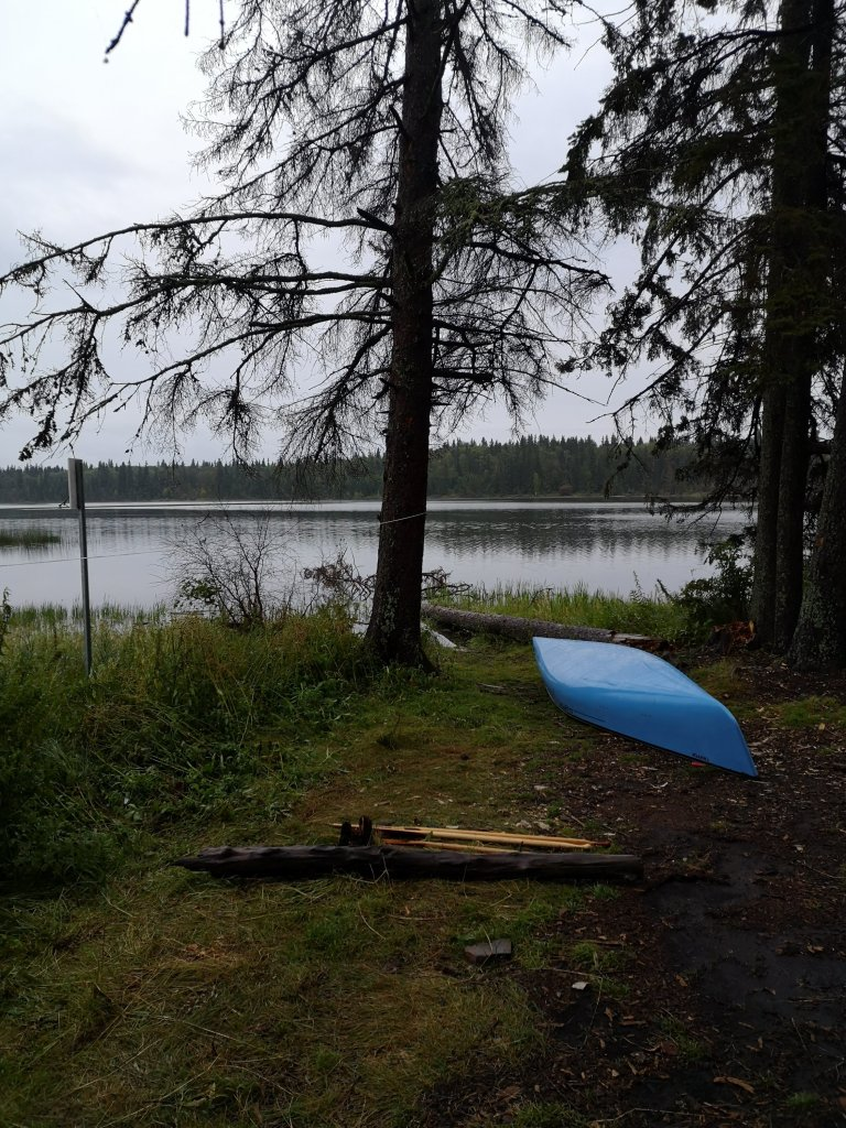 A blue canoe sits upturned on the shore of a boreal lake
